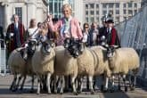 Mary-berry-Sheep-drive-andrew-sillett