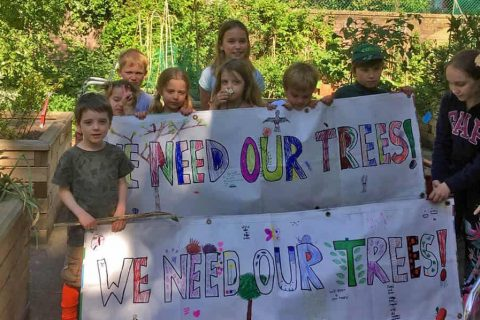Golden Lane residents were fighting to save seven mature trees lining the estate